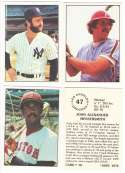 1976 SSPC - NEW YORK YANKEES Team Set