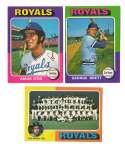 1975 O-Pee-Chee (OPC) - KANSAS CITY ROYALS Team Set EX+ Cond Brett 15/85, Checklist marked