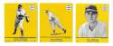 1941 Goudey (Yellow) Reprints - PHILADELPHIA PHILLIES Team Set