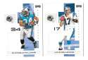 2007 Playoff NFL Football Team Set - CAROLINA PANTHERS