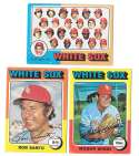 1975 Topps VG Condition - CHICAGO WHITE SOX Team Set