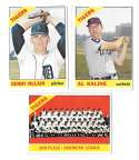 1966 Topps - DETROIT TIGERS Team Set 31 cards