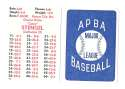 1924 APBA Season - BOSTON BRAVES Team Set