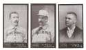 1895 Mayo Cut Plug N300 Reprints - CINCINNATI REDS Team Set