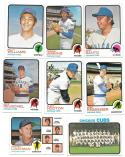 1973 Topps EX+ CHICAGO CUBS Team Set