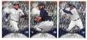 2016 Bowman Platinum ICE - DETROIT TIGERS
