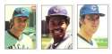 1976 SSPC - CHICAGO CUBS Team Set