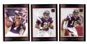 2007 Bowman Football - MINNESOTA VIKINGS