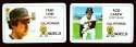 1981 Perma-Graphics Credit Cards - CALIFORNIA ANGELS Team Set