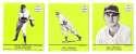 1941 Goudey (Green) Reprints - PHILADELPHIA PHILLIES Team Set