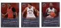 2012-13 Panini Brilliance Basketball Team Set - Toronto Raptors